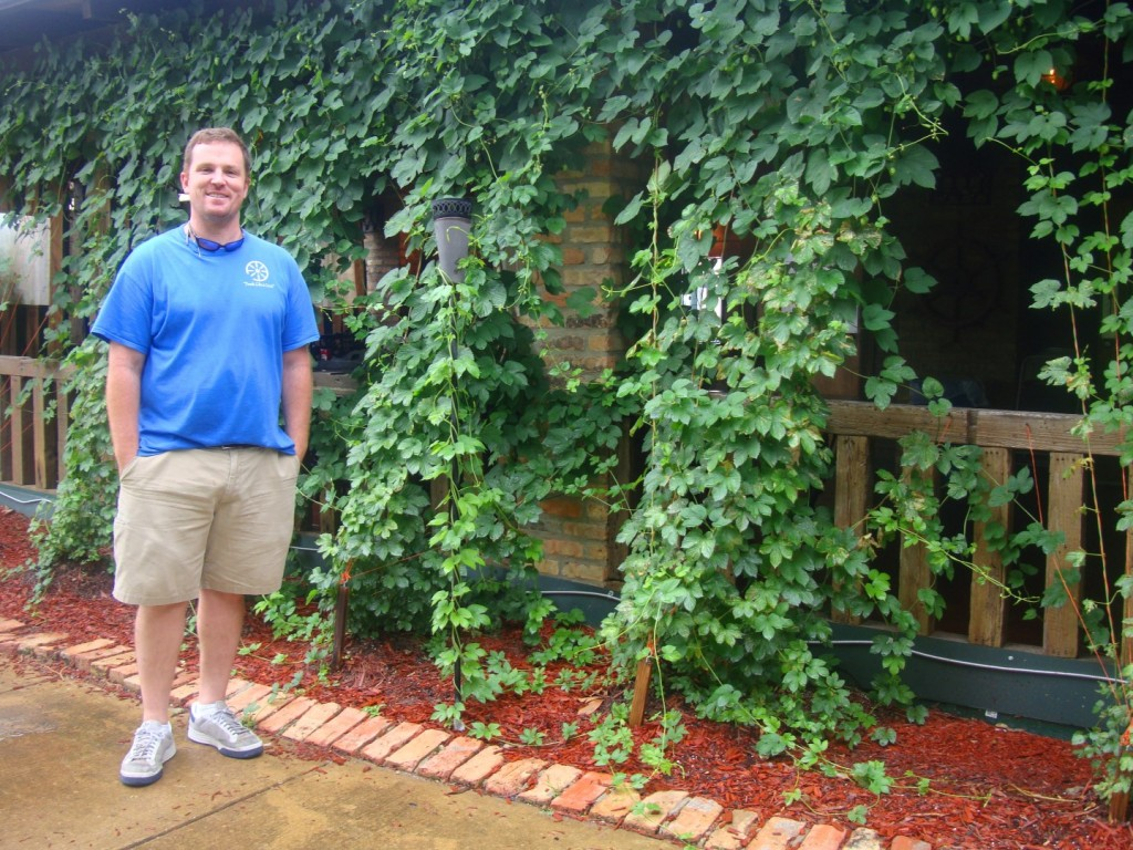 Can You Grow Hops In Louisiana?