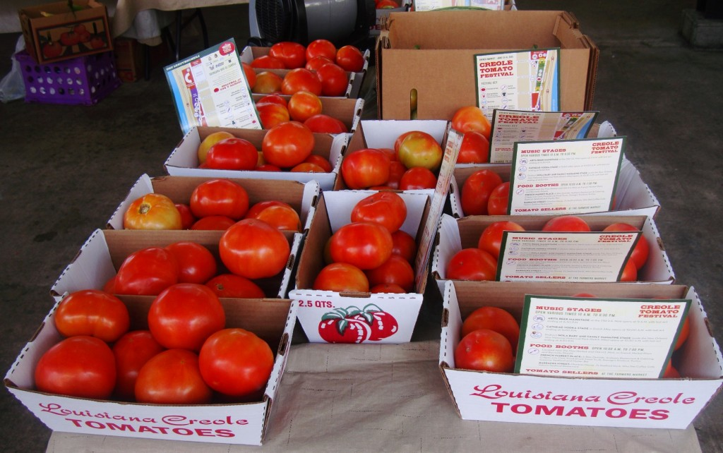 2015 Crop Of Creole Tomatoes