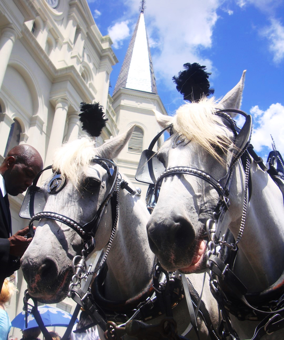 Scenes From Pete Fountain's Funeral In New Orleans